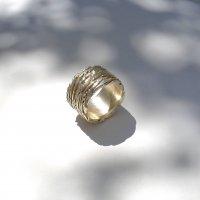 Mozione - Zilveren ring -