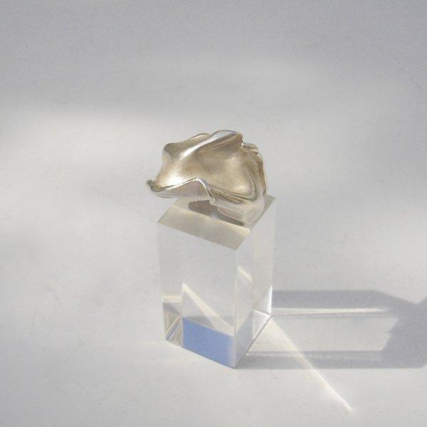 Piegare - Zilveren ring -