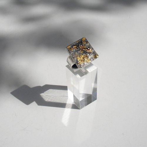 Belleza - Zilveren ring met goud -