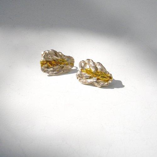Roca - Zilveren oorstekers -